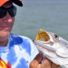 Thumbnail image for Tarpon Springs Fishing Report